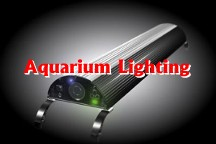 Aquarium Lighting
