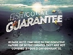 Saltwater Fish Guarantee Details