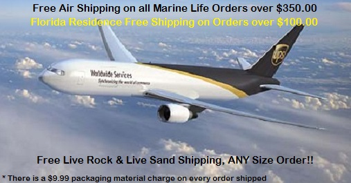 Saltwater Fish Free Shipping on orders over $350.00