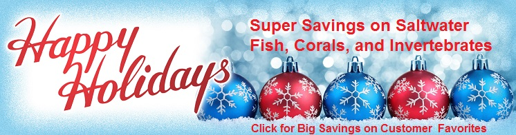 Picture of Sale Banner for Saltwater Fish & More on SALE!